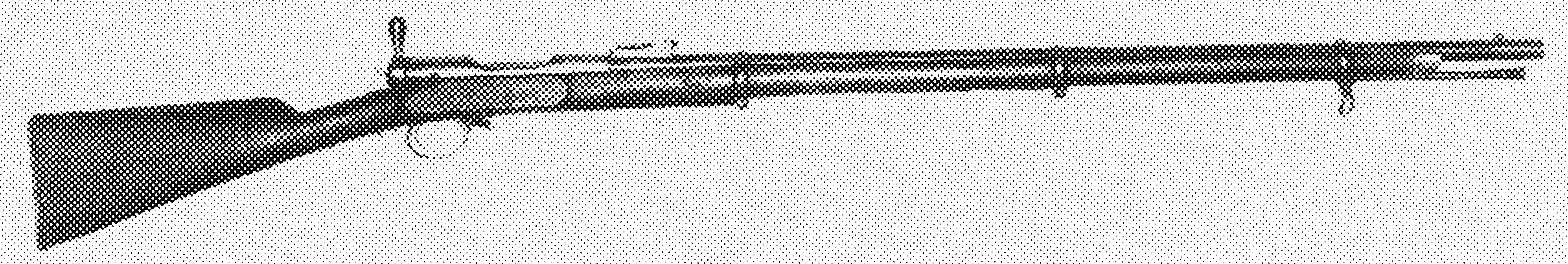 Brown Mfg. Co./Merrill Patent Breechloading Rifles