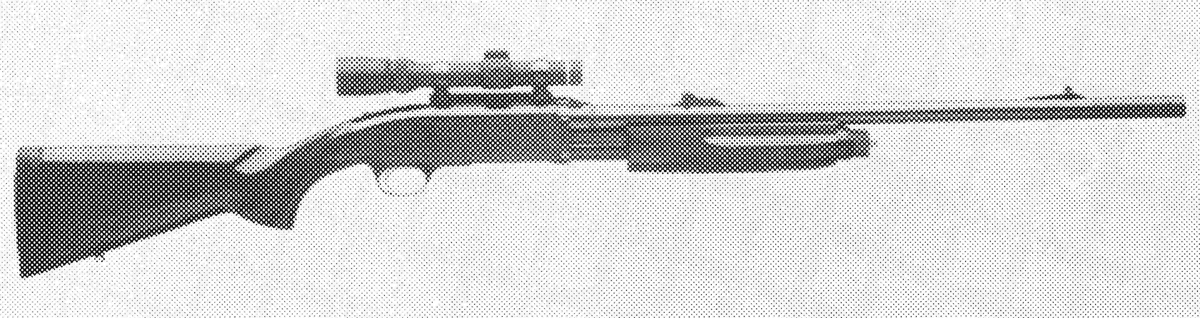 BPS Game Gun