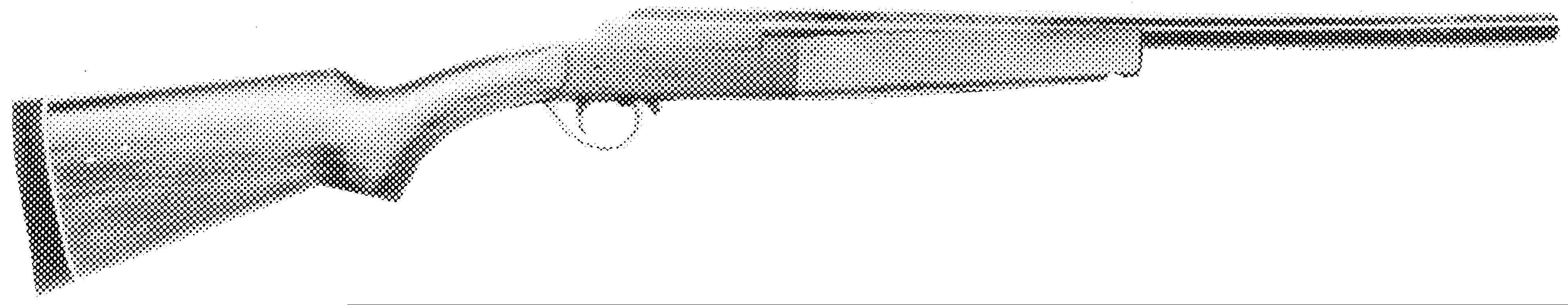 Single-Barrel Shotgun Youth Model