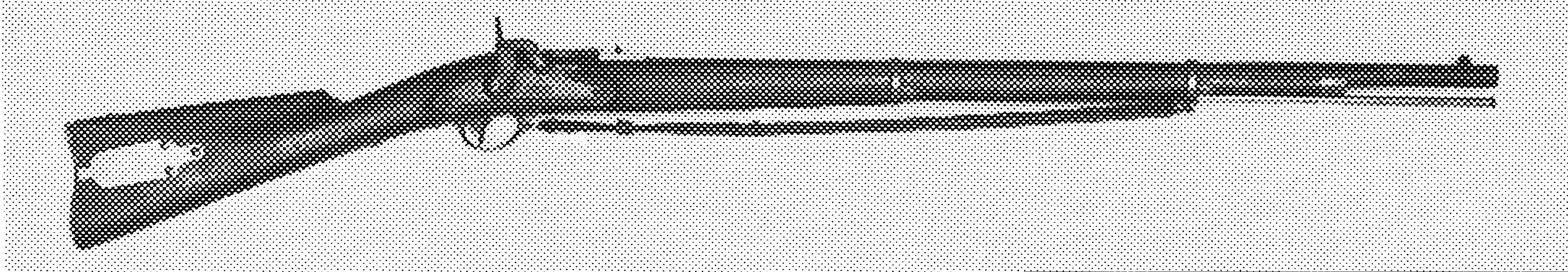 Merrill Rifle