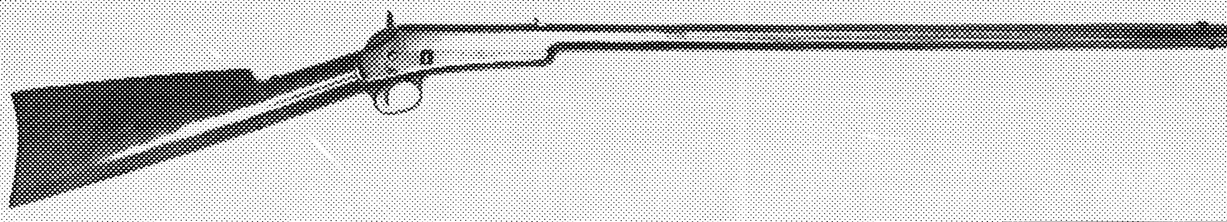 Lee Sporting Rifle