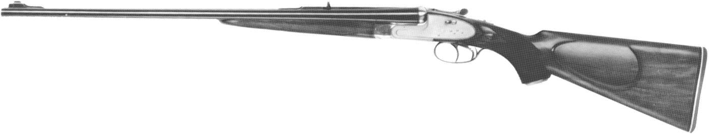 Super Express Rifle