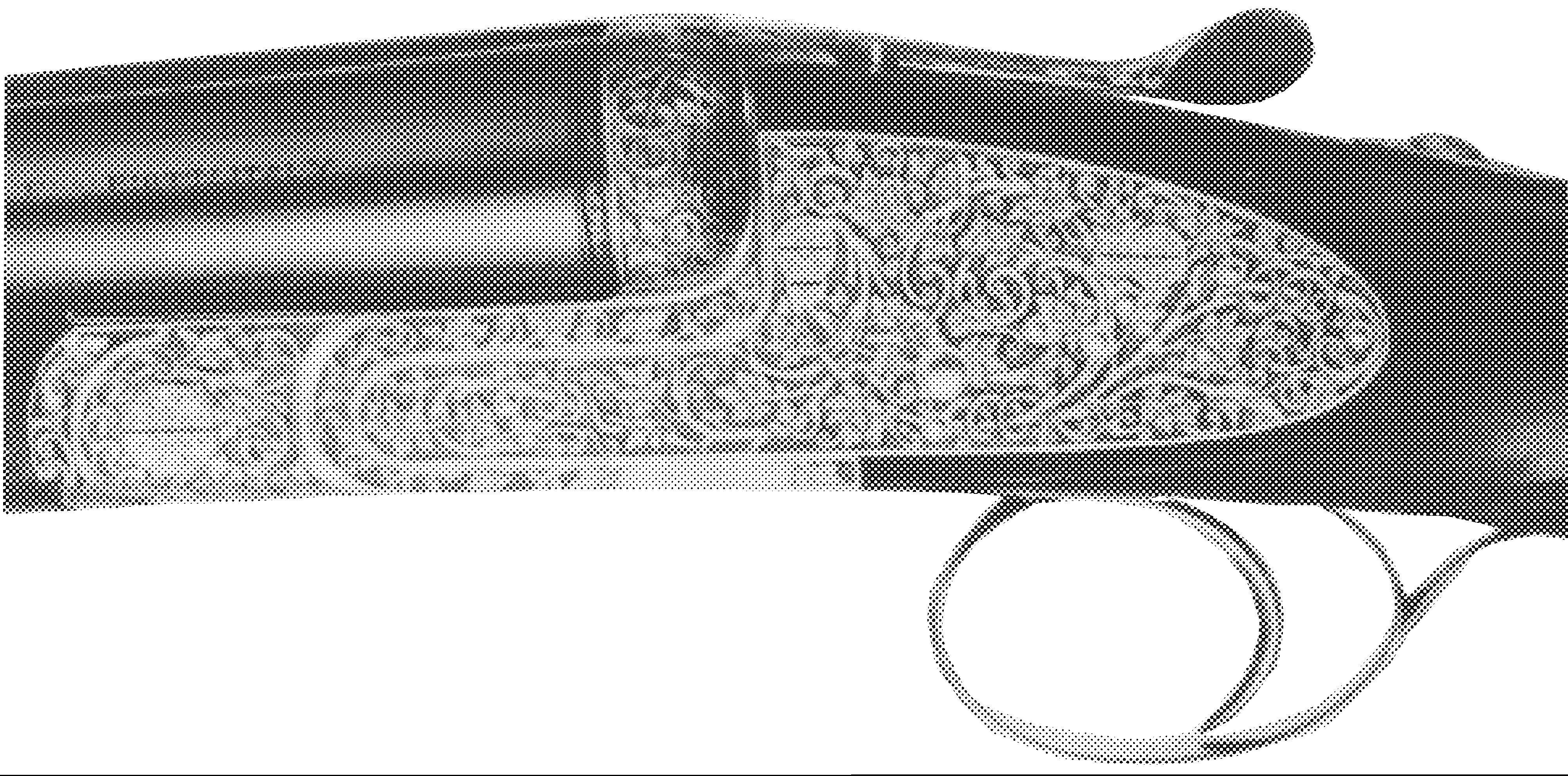 Model Lunik