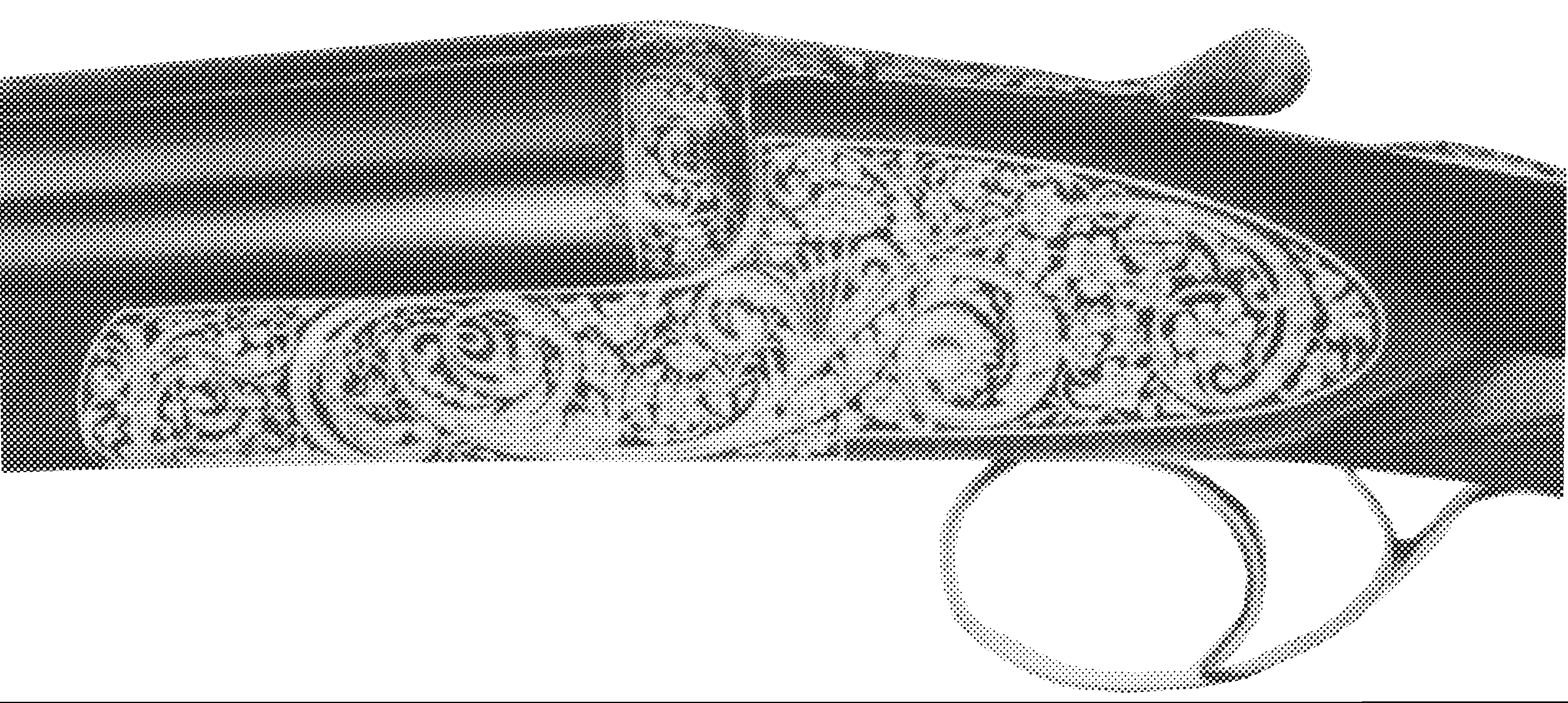 Model Monaco