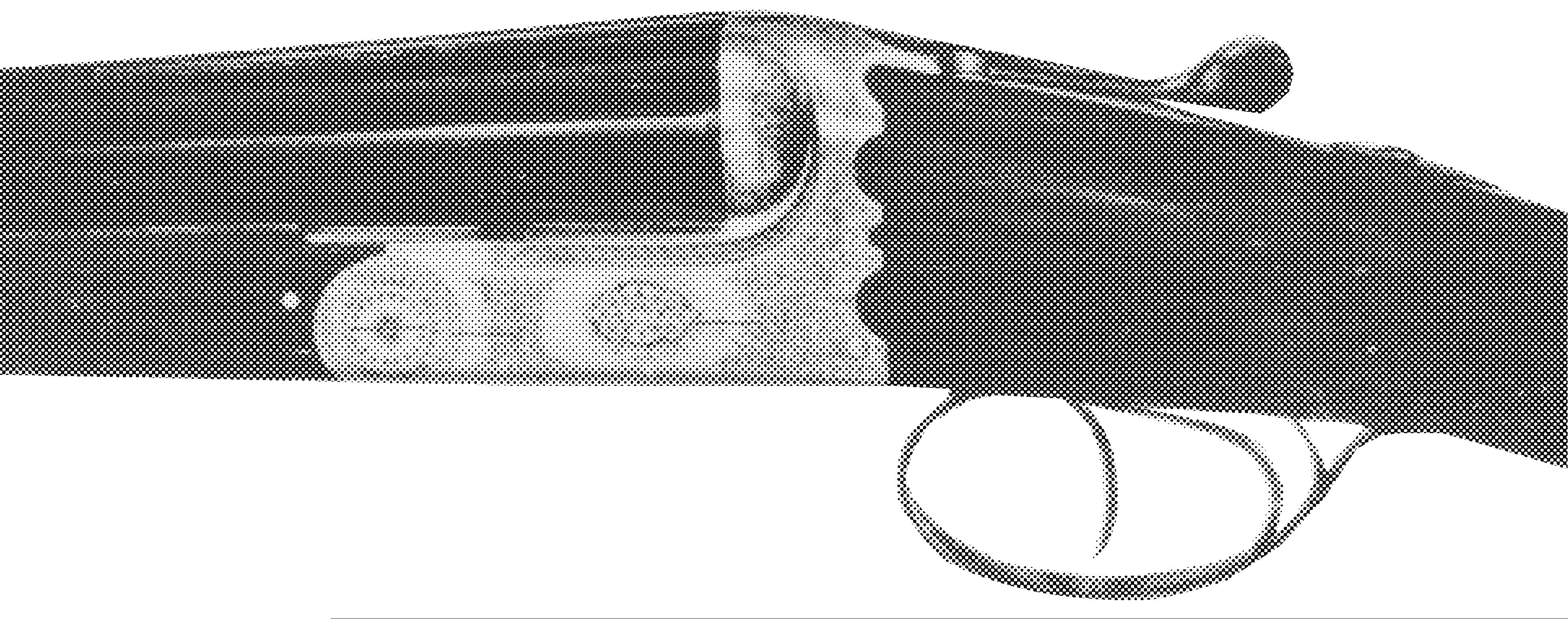 Model Piuma (BSEE)