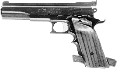 Model 81L