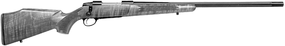 Long Range Hunting Rifle