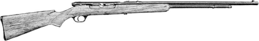 Model 6