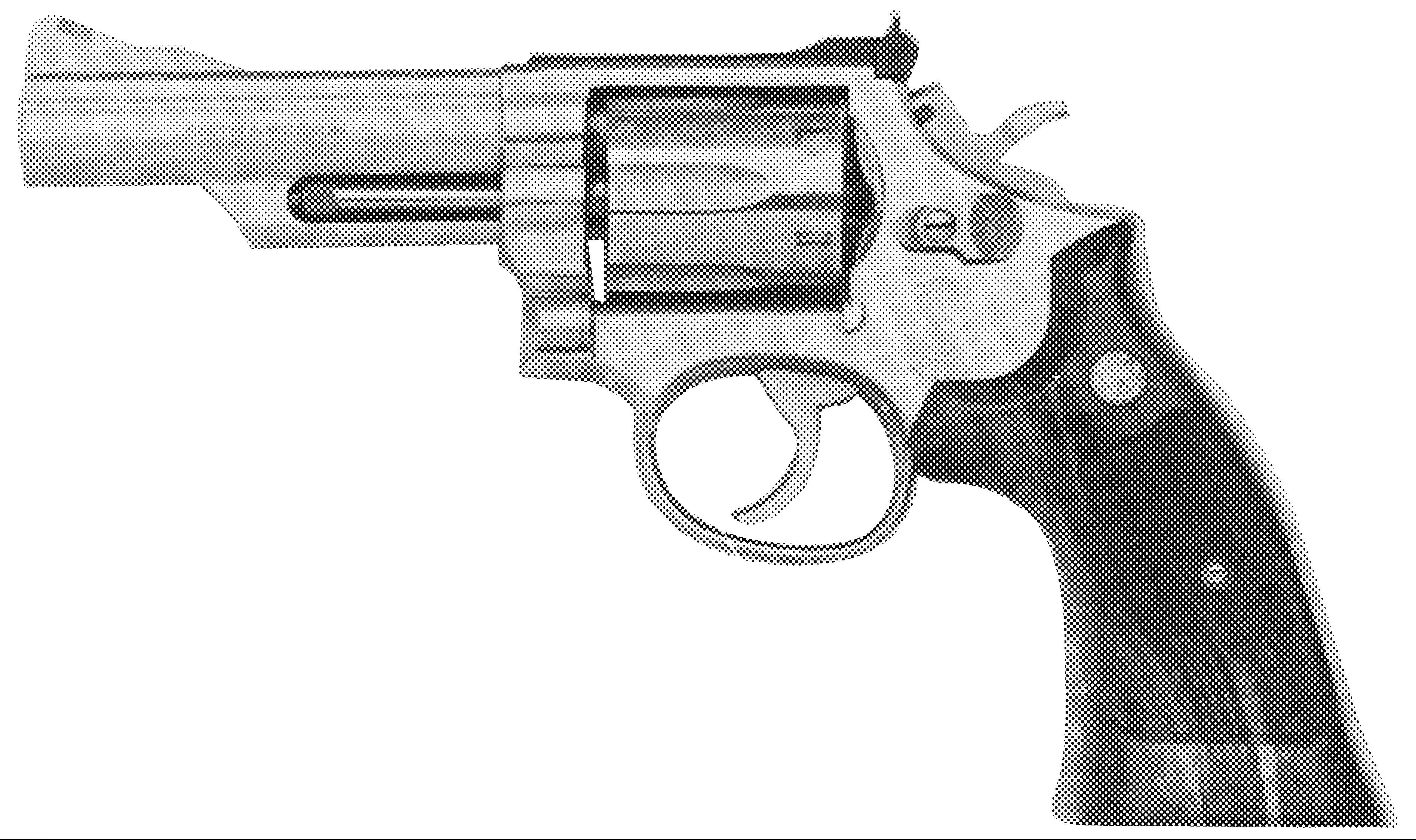 SMITH & WESSON Model 66 .357 Magnum F-Comp :: Gun Values by Gun Digest
