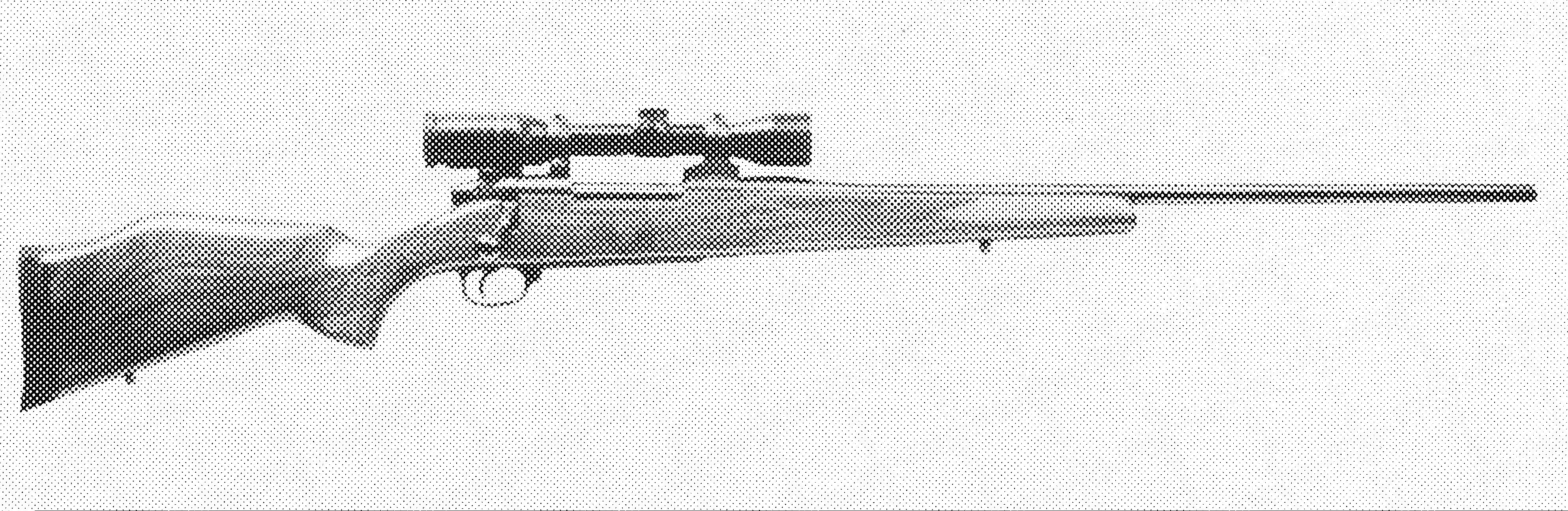 Mark V Sporter