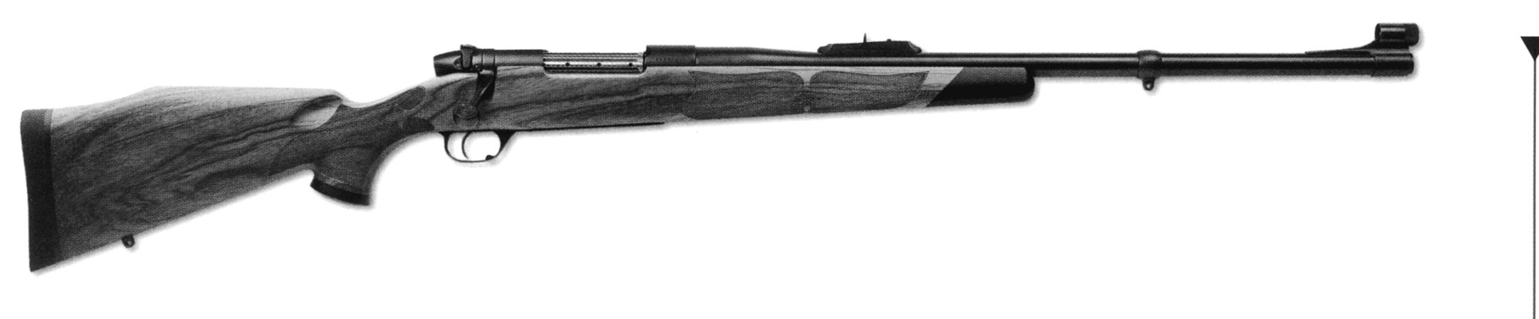 Safari Grade Custom