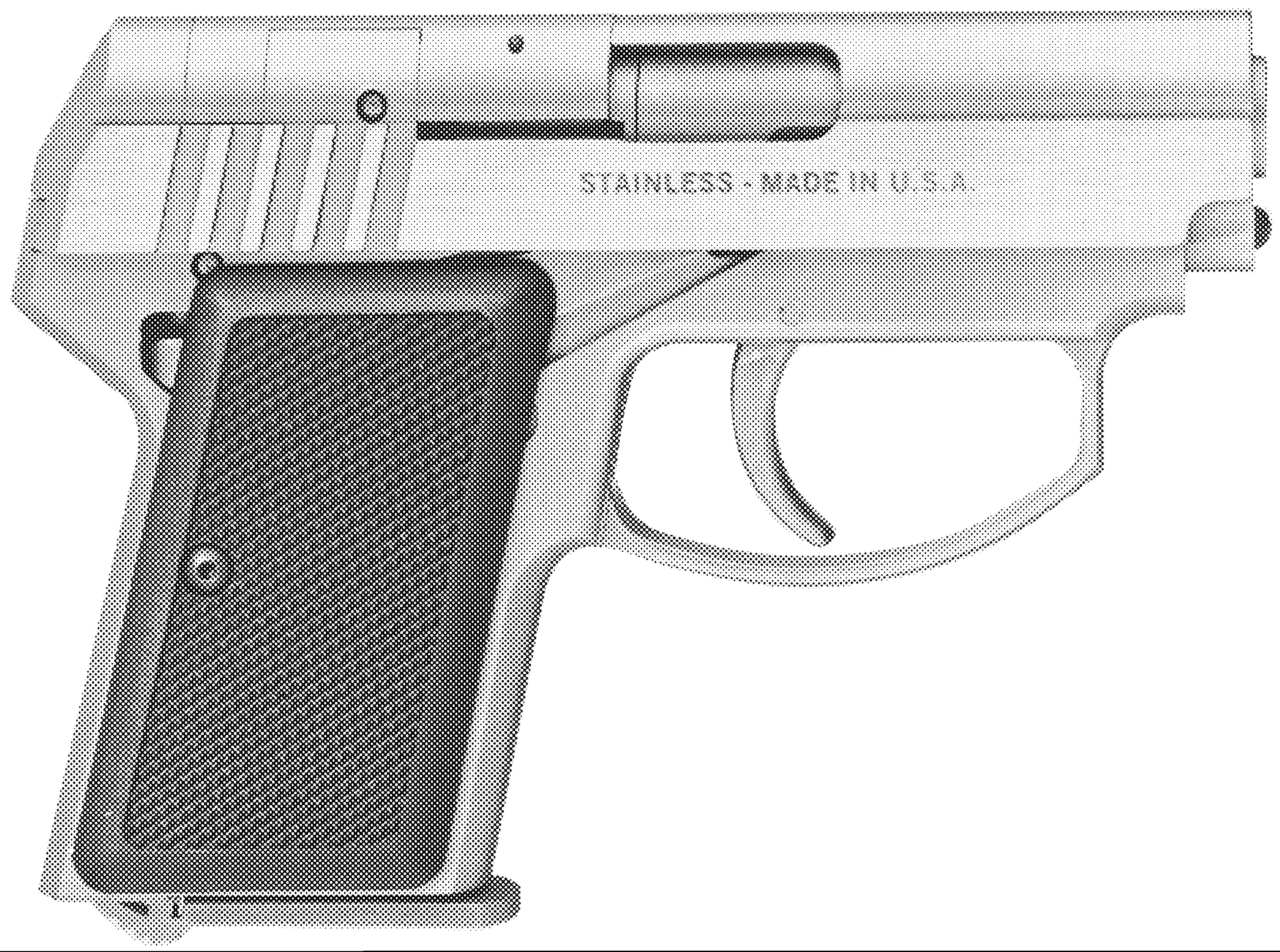 Back Up Pistol .22/.380