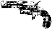 House Model Revolver