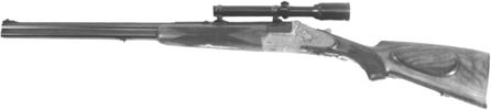 Model 55BSS
