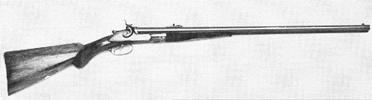Double-Barrel Rifle