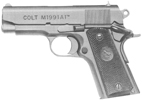 M1991A1 Compact