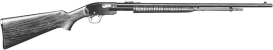 Model 29